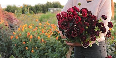 Bloemen in de zorg: het effect van geuren en kleuren tickets