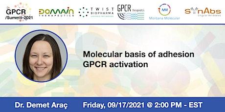 Dr. GPCR  Summit 2021 Presents Dr. Demet Araç tickets