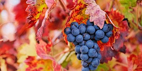 Viña Otano Fall Wine Dinner tickets