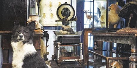 The Art of Collecting: Panel of Taxidermy and Natural History Collectors tickets