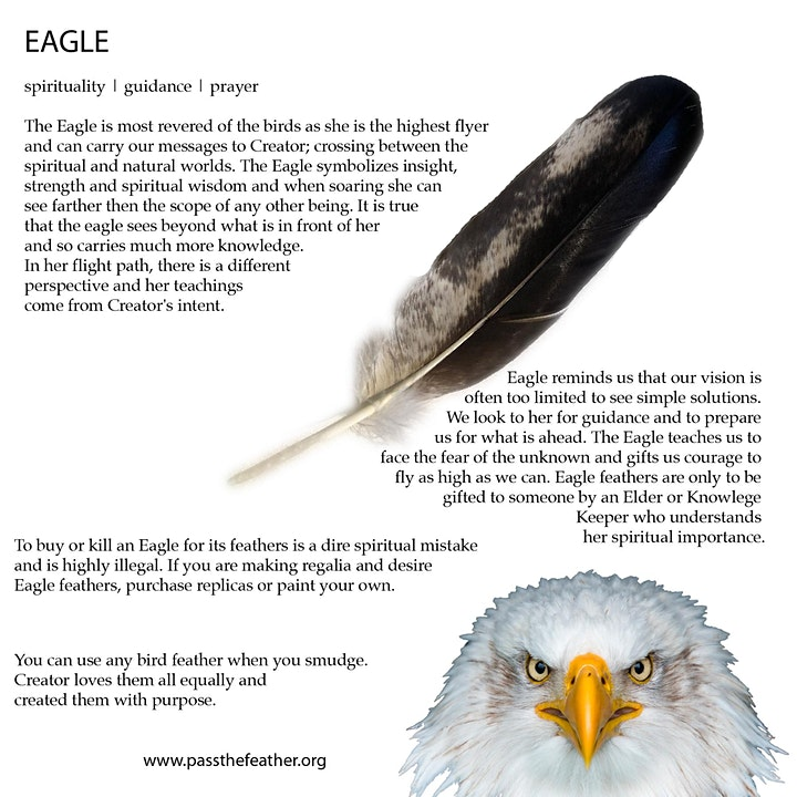 Eagle Feather Ceremony • For Survivors of Indian Residential Schools image