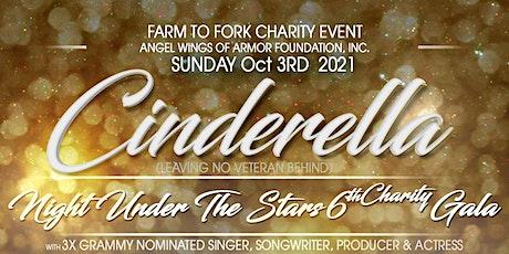 Cinderella Night Under The Stars 6th Charity Gala tickets