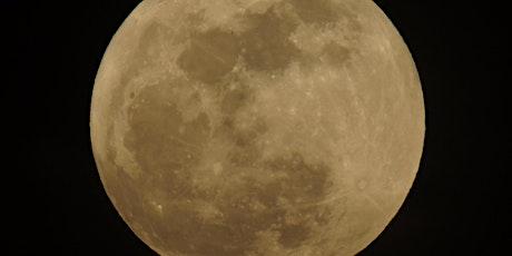 Full Moon & Fall Equinox Breathwork Journey (Virtual) Tickets