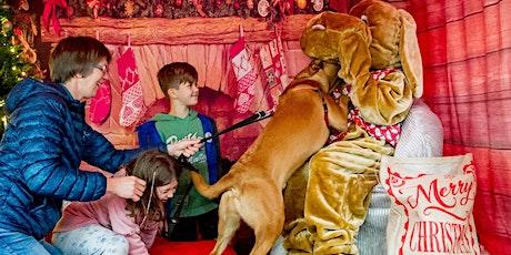Doggy Christmas Market & Santa Paws Grotto tickets