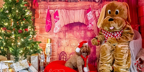 Santa Paws Grotto at Tavistock Doggy Market tickets