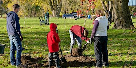 Tree Planting - Petersburg tickets