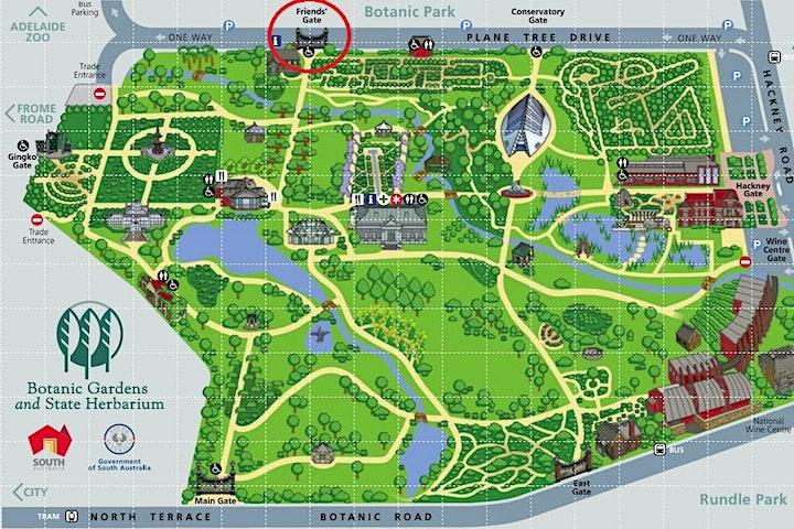 Adelaide Botanic Garden Wellness Walk with Big Heart Adventures image
