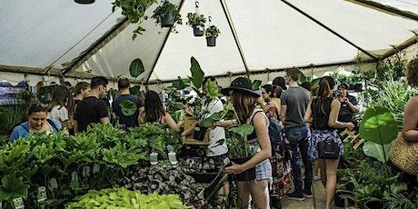 Wollongong Virtual Pop-up shop - Huge Indoor Plant Sale tickets