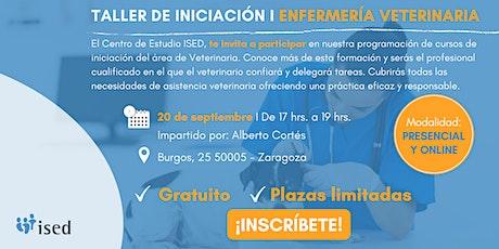 Taller de Iniciación de Enfermería Veterinaria 20 Sept ZAZ - TARDE entradas