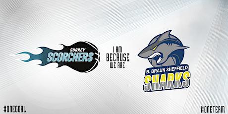 Scorchers v Sheffield Sharks (BBL) - Surrey Sports Park tickets