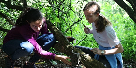 STEM Solutions @ Highland Wildlife Park tickets