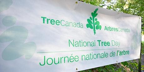 National Tree Day  with BRZY - GTA tickets