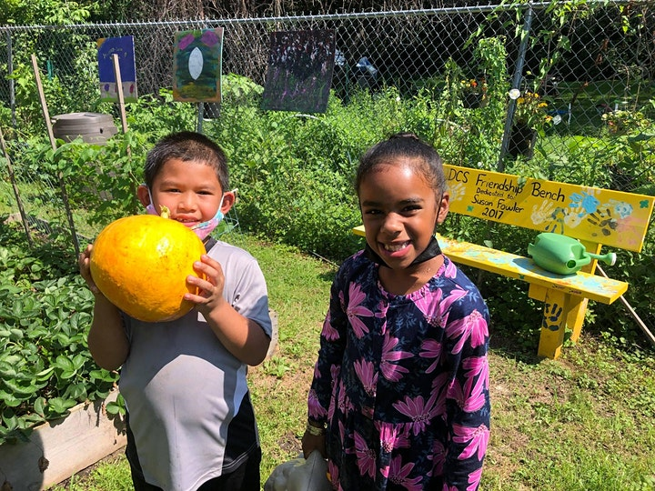 Garden Tour: See what Albany kids are growing image