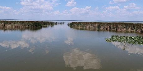 Field Trip through the Lake Apopka Wildlife Drive tickets