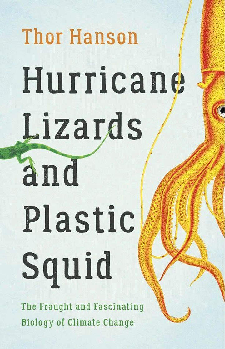 Hurricane Lizards and Plastic Squid cover image