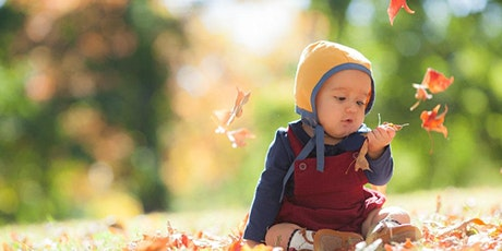 FALL MINI SESSIONS- LINCOLN PARK-  Sat Oct 2nd, 9th, 10th, 23rd 2021 tickets