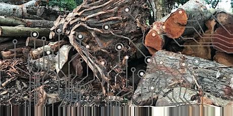 Of Underground Schematics & The Fallen Tree by artist Tini Aliman tickets
