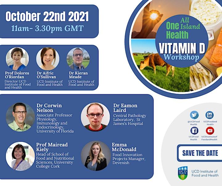 All Island One Health Vitamin D Workshop image