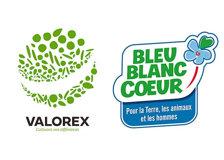 Image pour 7èmes rencontres Nutrition - Alimentation - Métabolisme - Sport - Santé