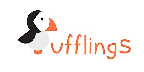 Pufflings tickets
