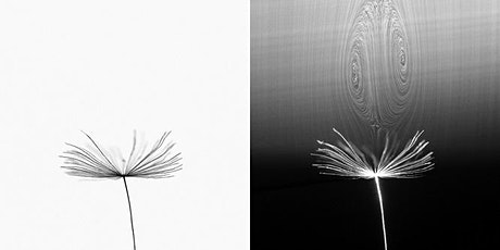 How Mathematics Uncovered the Dandelion's Halo with Cathal Cummins tickets