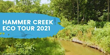 Hammer Creek Eco Tour tickets