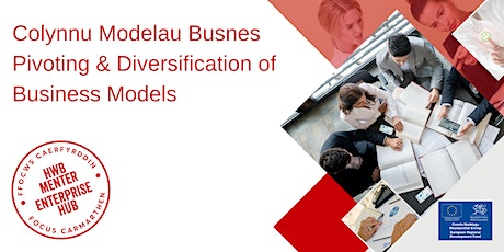 Colynnu Modelau Busnes   Pivoting & Diversification of Business Models tickets