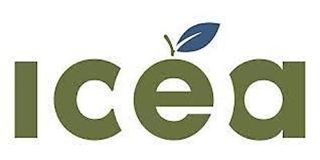 Assemblée générale 2021 de l'ICÉA billets