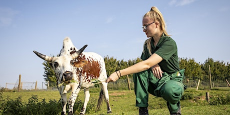 Sparsholt Open Day - Saturday 9 October 2021 - Animal Studies tickets