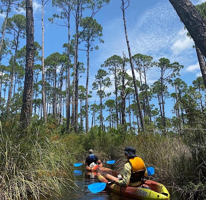 Indian Bayou Kayak Excursion image