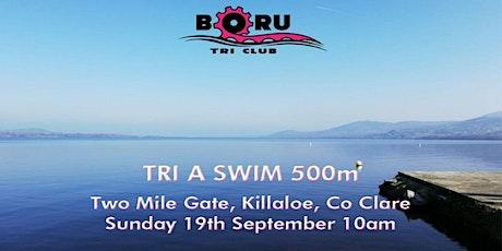 TRI A SWIM,  500m-End of season club training swim. tickets
