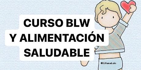 CURSO BLW Y ALIMENTACION COMPLEMENTARIA OCTUBRE: VIVO + GRABACION entradas