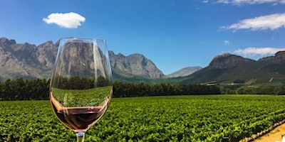 South Africa and the taste of the cape!