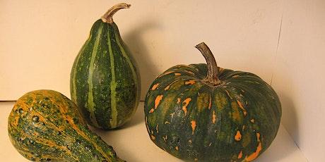 Botanical Illustration 2-Day Workshop: Drawing Gourds tickets