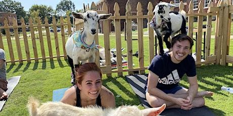 Greenville Goat Yoga Class tickets