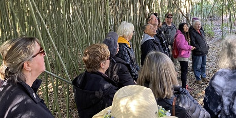 Explore the Woodland Trails - Wednesday Walk Series tickets