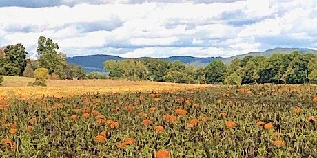 Painting Landscape of Deerfield tickets