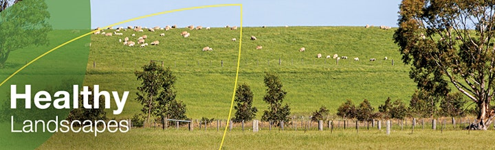 Grass and Pasture Identification Webinar image