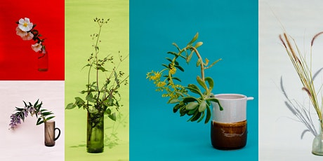 Slow down with still life: medium format photography workshop tickets