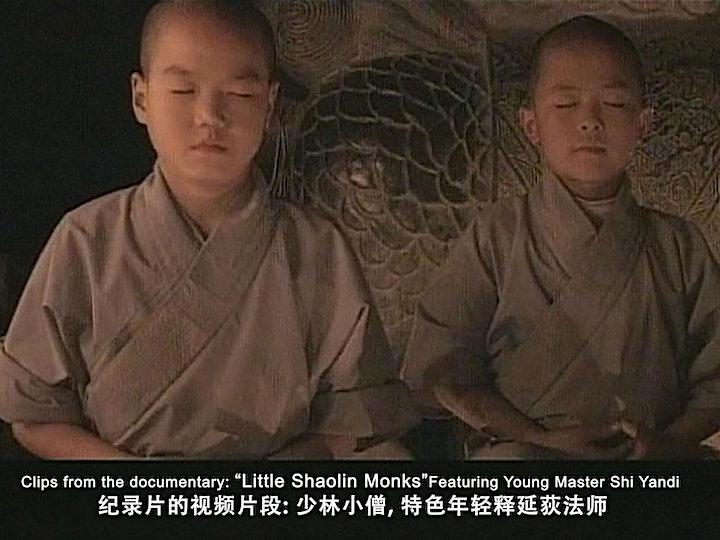 Chan (Zen) Meditation with Master Shi Yandi image