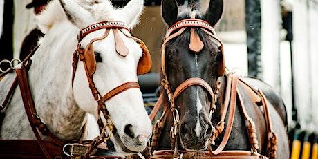 Harvest Horse & Wagon Rides tickets