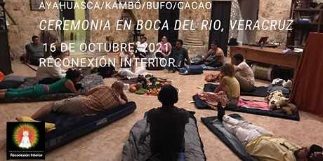 Boca del Rio, Veracruz con Ayahuasca/Kambó/Bufo/Cacao entradas