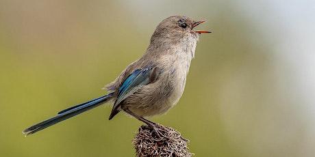 BirdLife WA: Walk @ Rotary Park, Wanneroo tickets
