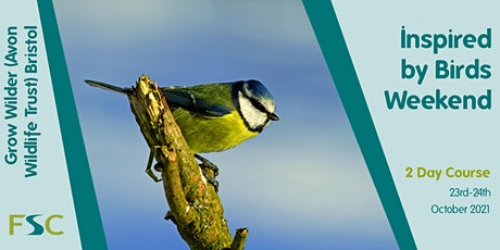 Biology, Ecology and Drawing Urban Birds tickets