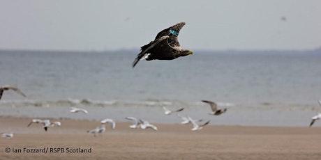 RSPB Scotland Tentsmuir Coast & Forest Nature Walks tickets