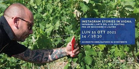 Instagram Stories in vigna biglietti