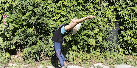 Fitness & Dance Pop-up in High Park tickets