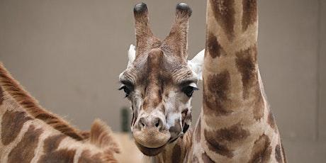 Zoo Social: New Arrivals biglietti