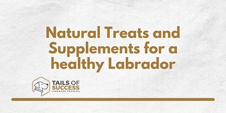 Tails of Success - Homemade treats and supplements for a healthy labrador tickets