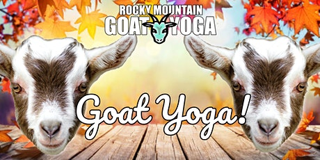 Baby Goat Yoga - October 16th (RMGY Studio) tickets